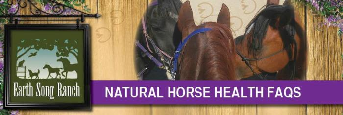 FAQs on Natural Horse Health
