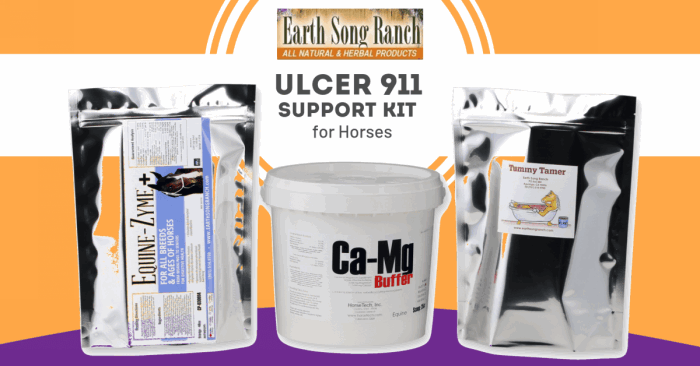 Natural Support for Horses with Ulcers in A Cost-Saving Kit