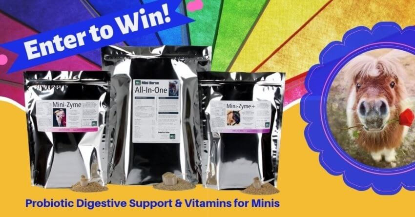 Miniature Horse Digestive/Vitamins Giveaway - Earth Song Ranch