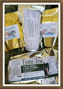 Natural Herbal Support for Equine Cushing's in a Cost-Saving Kit
